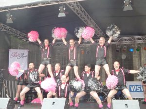 20160604 Pink Poms 1 (©a.simon)